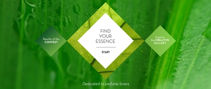 Find your essence